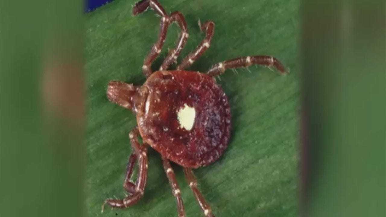 Oklahoma Woman Develops Meat Allergy After Tick Bite