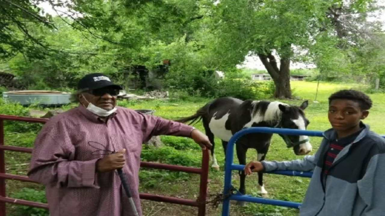Tulsa Man Needs Help Finding His Blind Father's Stolen Horse