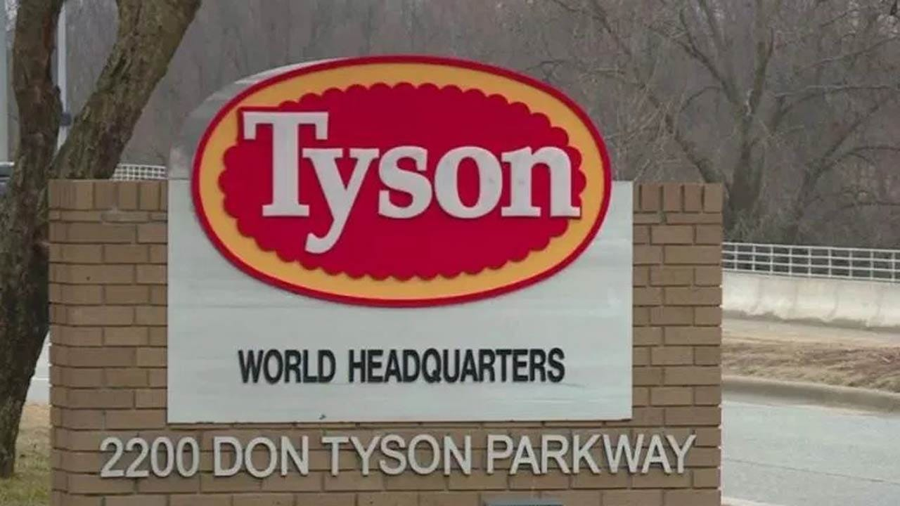 Tyson Recalls 95 Tons Of Chicken Fritters, Schools Found Plastic Parts