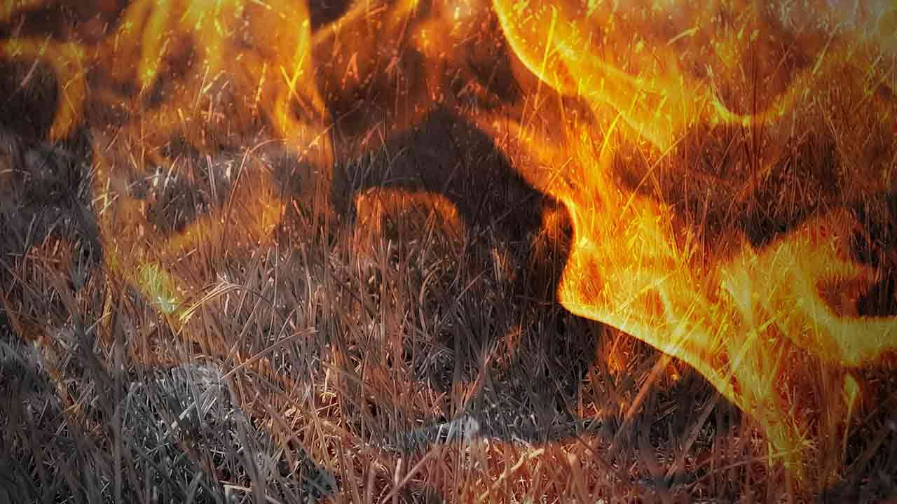 Firefighters Respond To Large Grass Fire In Catoosa