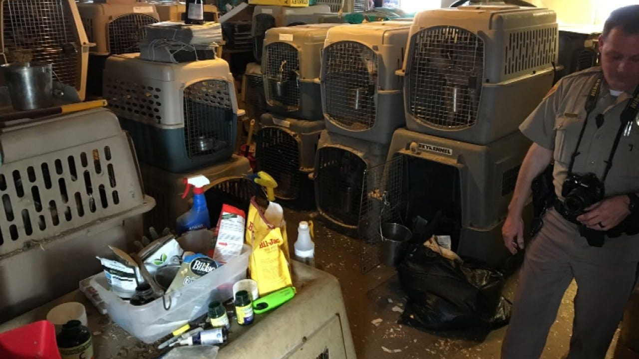 Charges Filed Against OK Woman With More Than 100 Dogs In Home