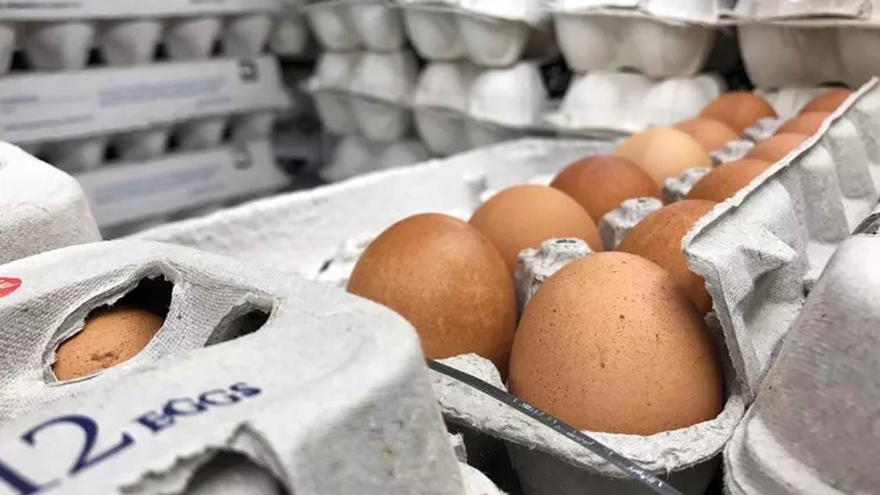 Salmonella Outbreak That Prompted Egg Recall Sickens More People