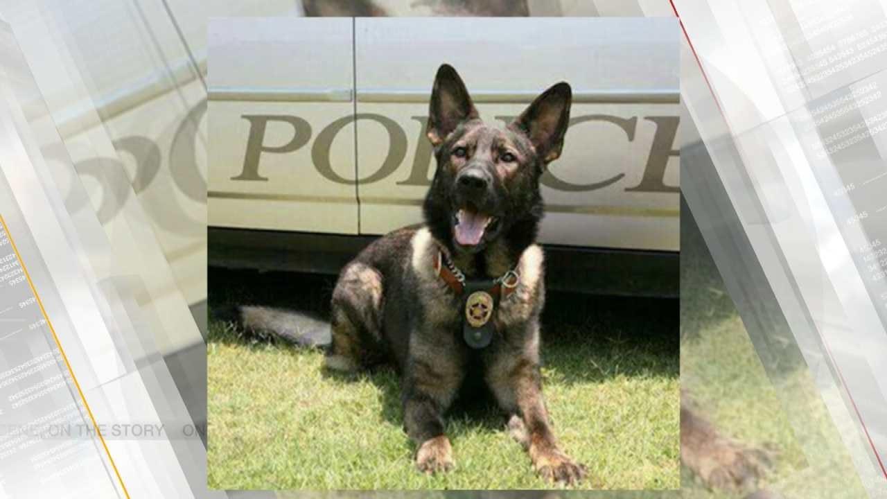 Bartlesville Police K9 Officer Critical Following Surgery