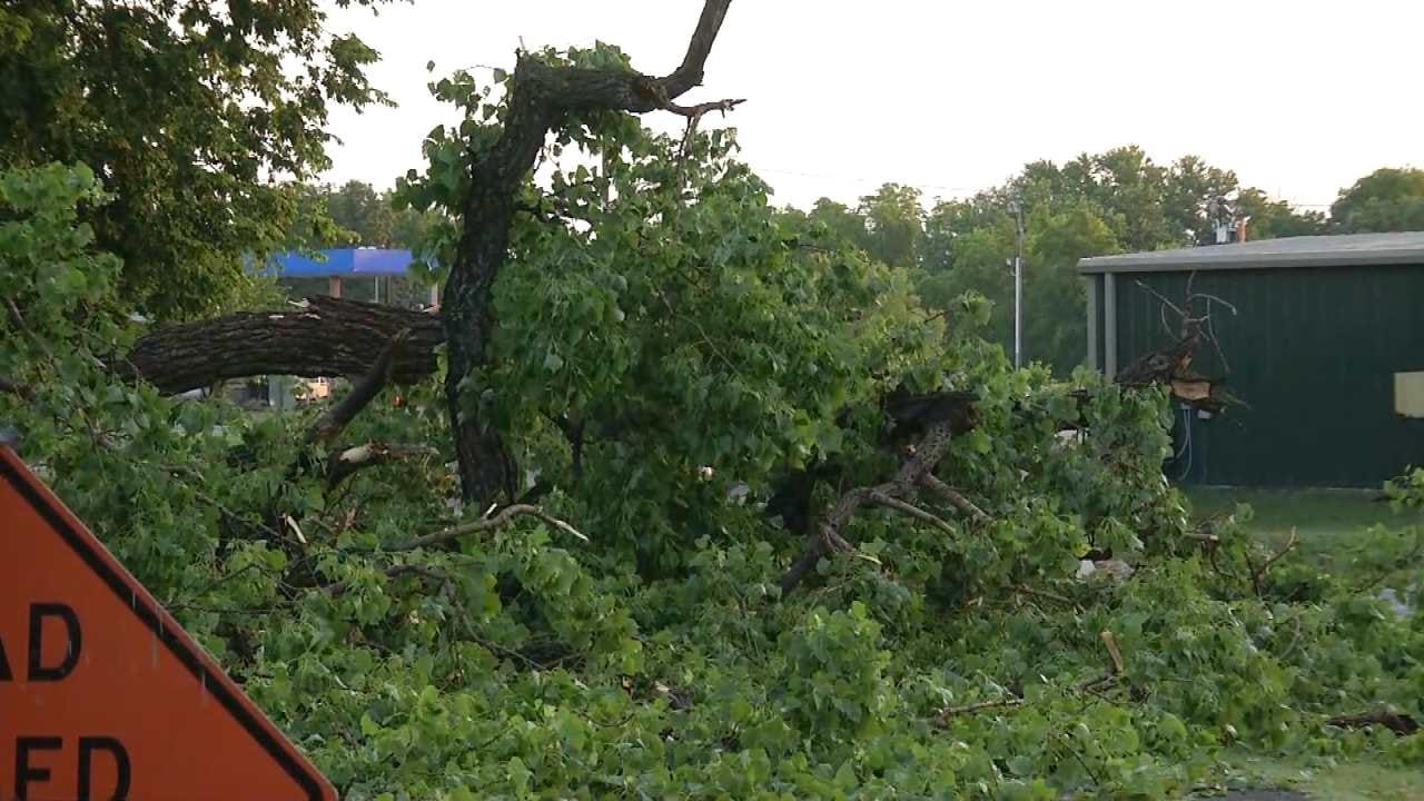 Winds Knock Down Trees In Haskell