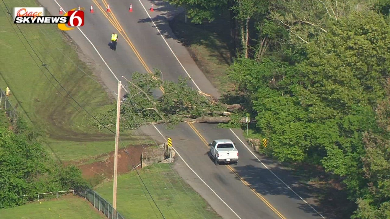 Fallen Tree Shuts Down Tulsa Street