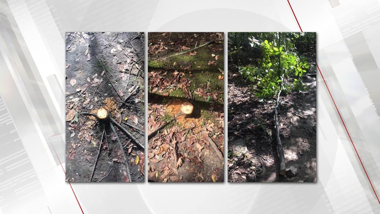 Vandalism Reported At Tulsa's Turkey Mountain