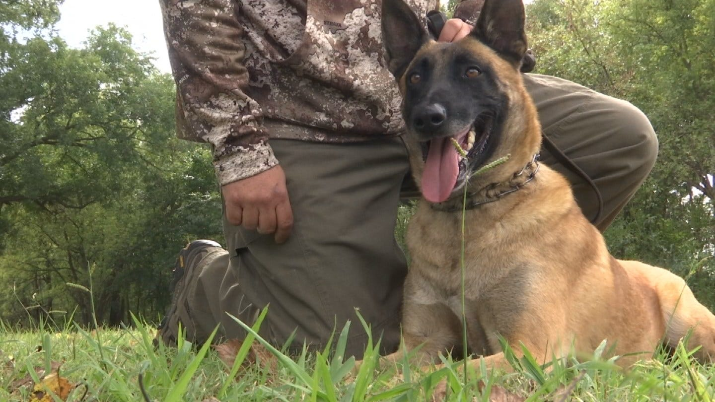 Oklahoma Police Officers Take Part in Unique K-9 Training