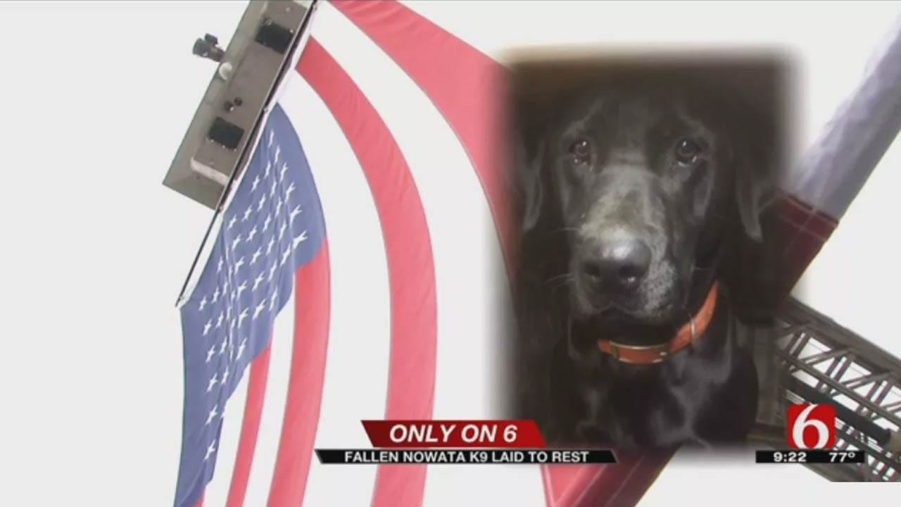 Charges Filed Against Woman Accused Of Killing Nowata Police K-9