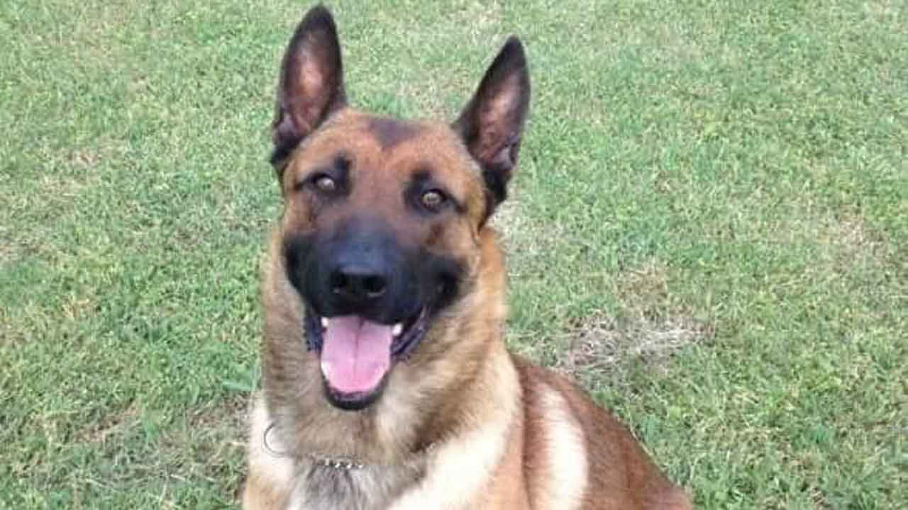 Department Comes Together To Say Goodbye To Chouteau K-9 Officer