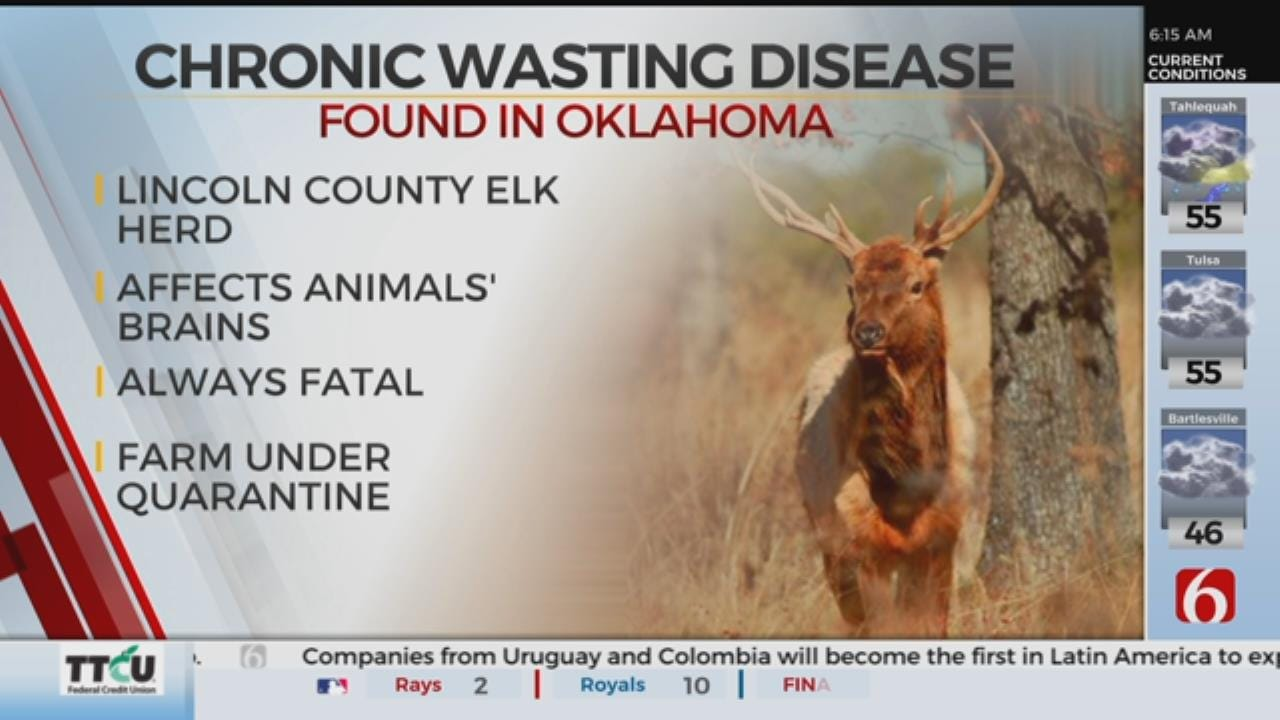 Chronic Wasting Disease Case Confirmed In Farmed Oklahoma Elk