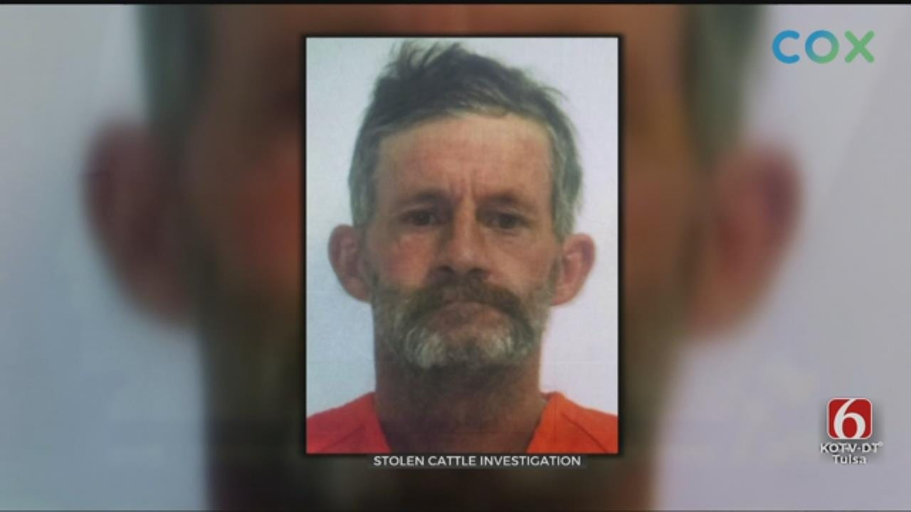 Ranch Manager Arrested For Stealing, Selling His Boss' Cattle in Creek Co.