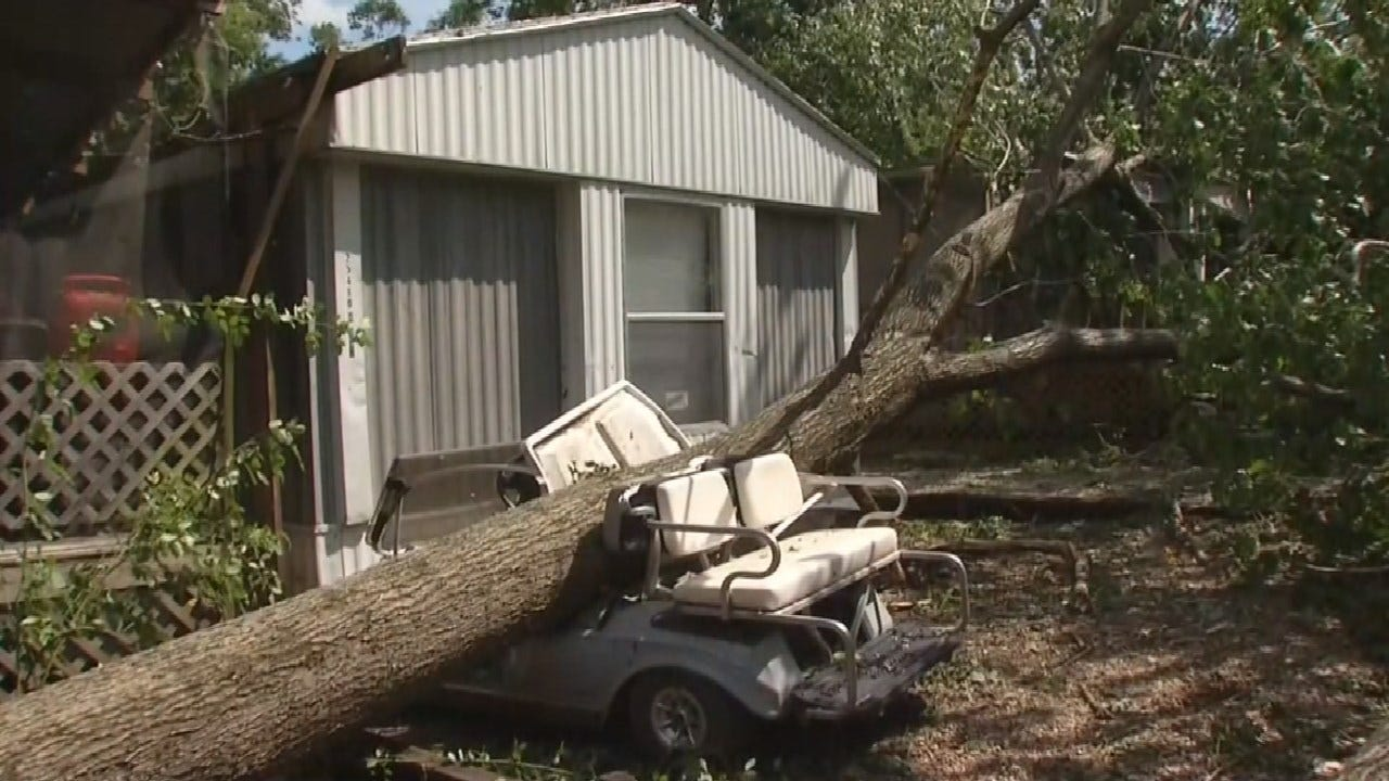 Storm Leaves Damaged Structures, Uprooted Trees in Delaware County