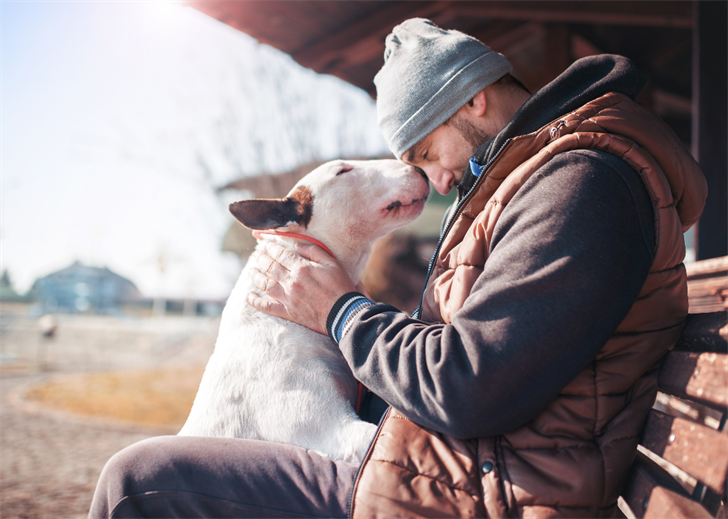 Heartwarming stories about dogs saving humans' lives