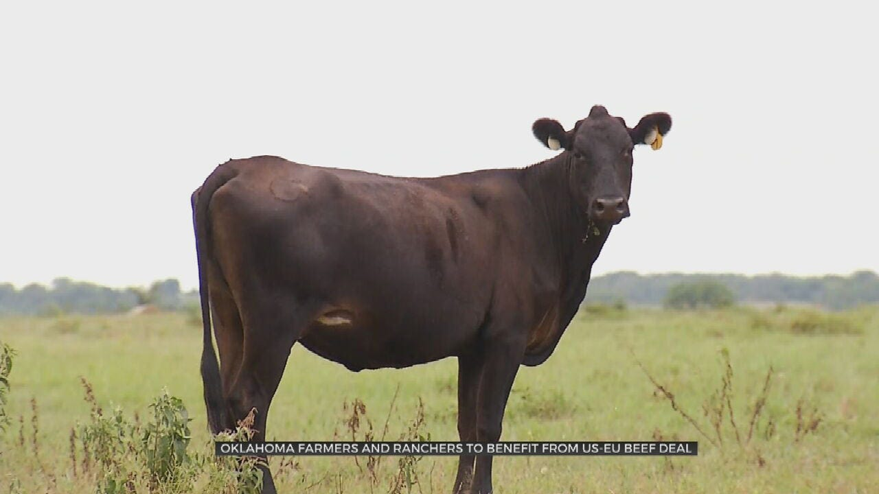 Increased Beef Exports May Help Oklahoma Ranchers