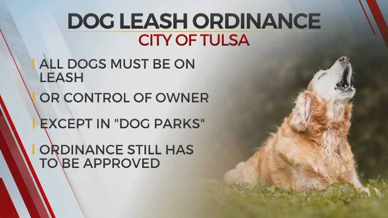 Tulsa Considering Leash Law At All But Designated Dog Parks