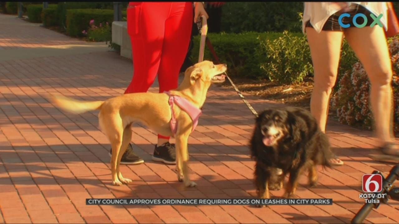 Tulsa City Councilors Vote To Require Dog Leashes At Parks