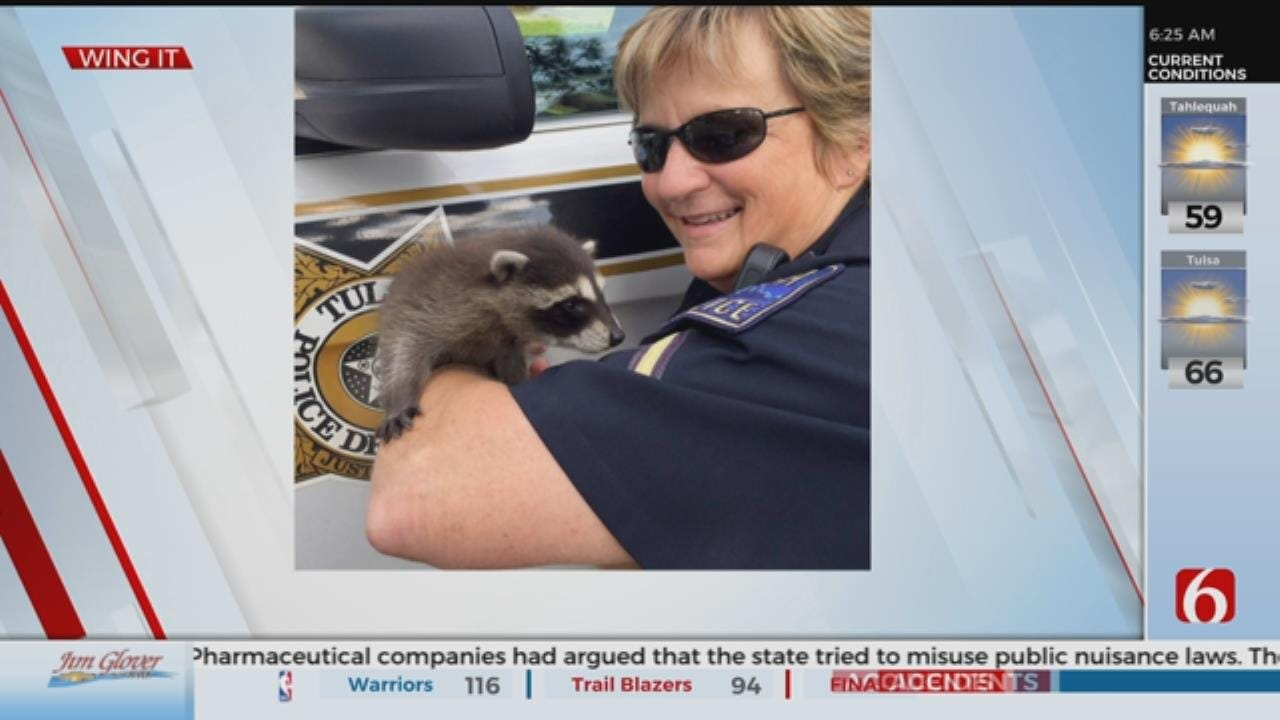 Tulsa Police Officer Rescues Home-Invading Raccoon