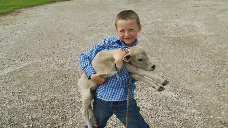 Tiny Calf Born To Oklahoma Family Makes A Friend For Life