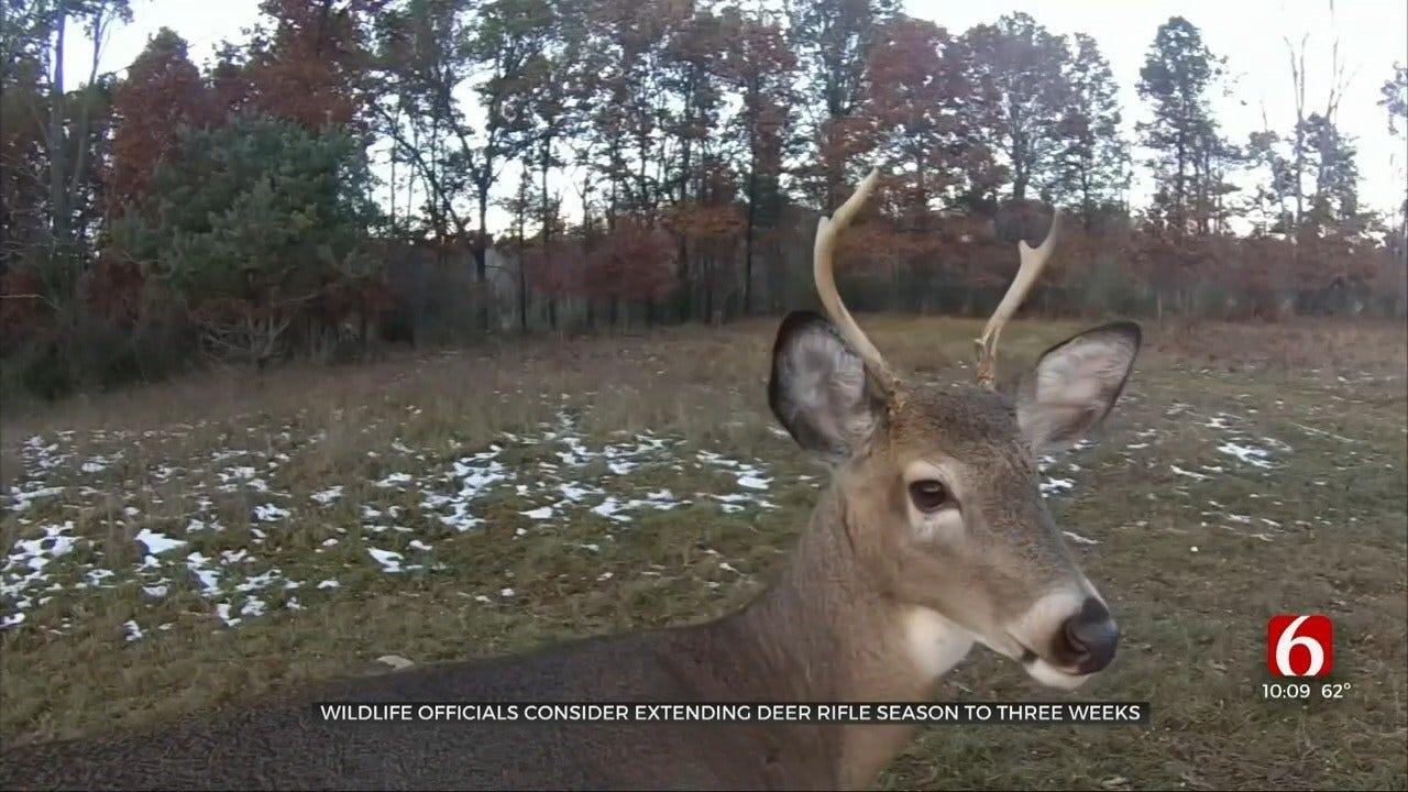 Wildlife Department Considering Extending Oklahoma Deer Gun Season