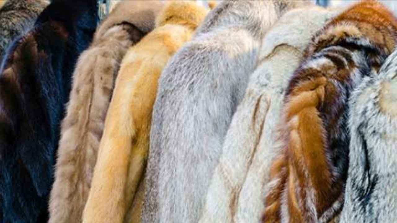 Macy's Announces It Will Stop Selling Fur By End Of 2020 FiscalYear