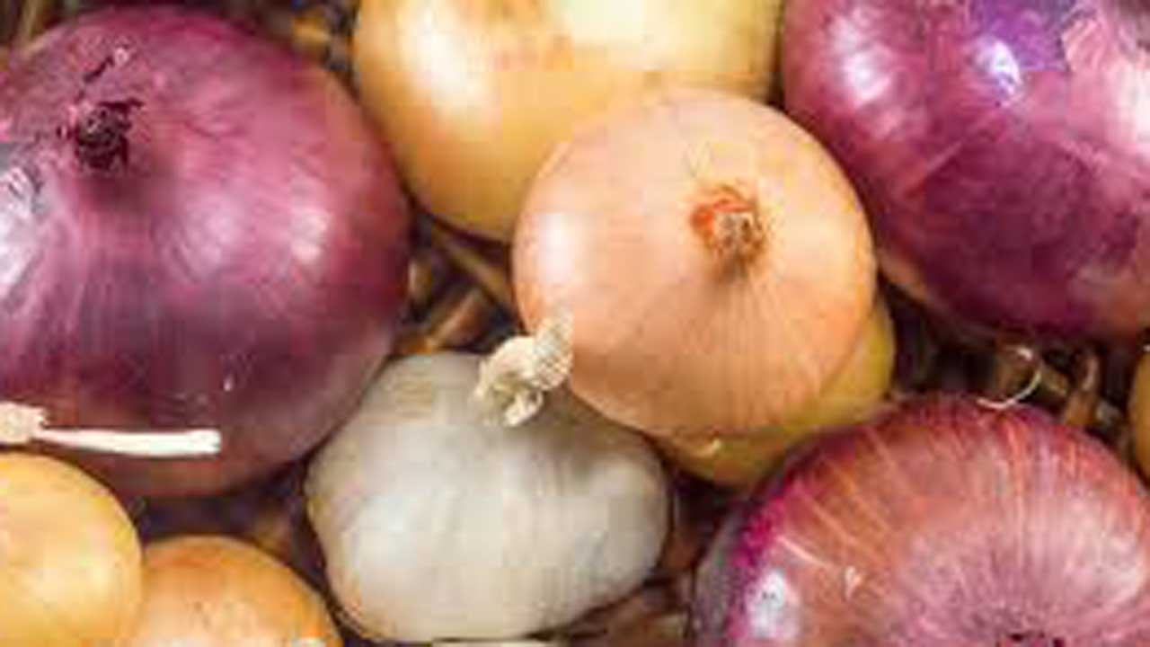 More Grocery Chains Recall Onions Possibly Tainted With Salmonella