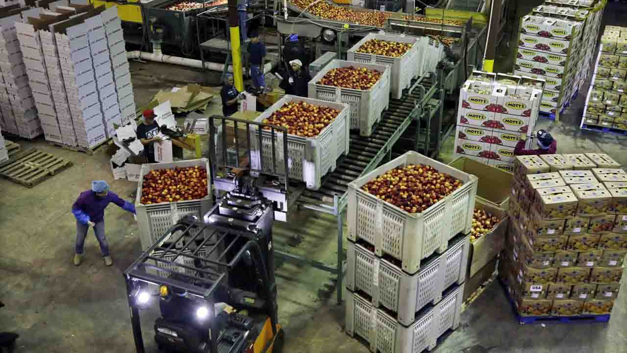US Producer Prices Up 0.6% In July, Biggest Jump Since 2018