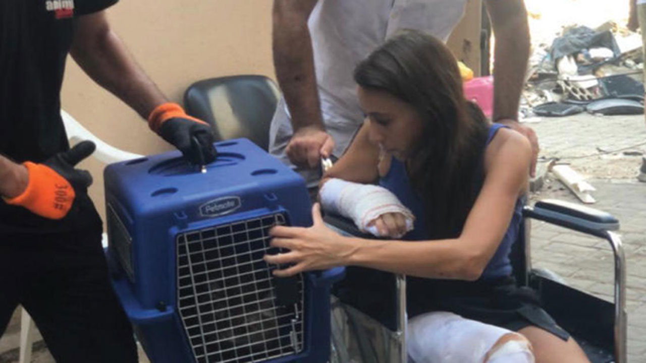 More Than 100 Missing Pets Reunited With Owners After Beirut Explosion