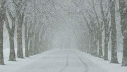 How To Protect Yourself From Old Man Winter