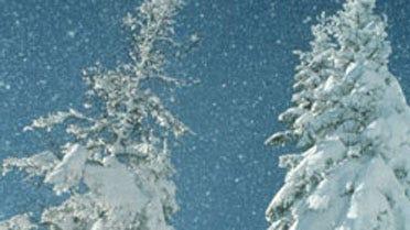 Dangers Of Winter Storms