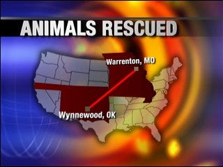 Exotic animals saved by Oklahoma park