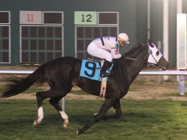 Must Be He Continues Local Turf Dominance, Three Straight