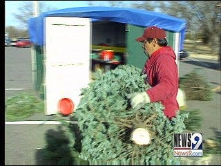 No Christmas Trees at Coit's This Year