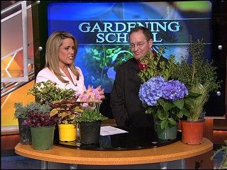 Gardening School to help recover from the ice storm