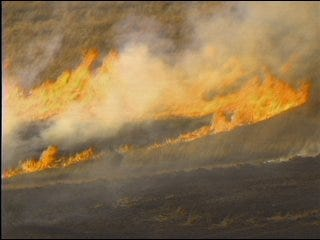 Perfect conditions Monday for more grass fires