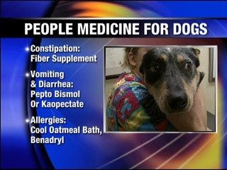 Your dog may benefit from your medicine