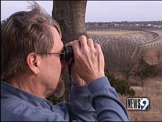 Travelers spot eagles at Lake Arcadia