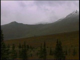 Fallin plans Alaska trip to explore oil options