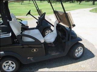 Golf course mascot beaten to death