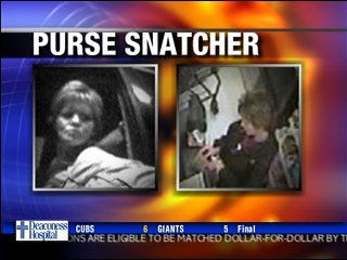 Police search for alleged purse snatcher