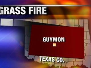 Friendly neighbors help extinguish grass fire