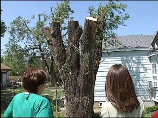 Elderly woman alleges tree trimmer ripped her off