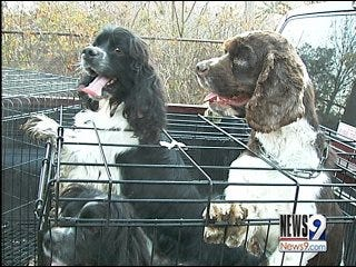 State Rep. Pushes for Puppy Mill Crack Down