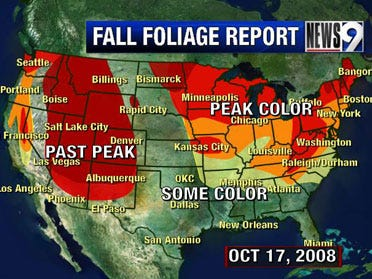 Fall foliage update Oct 17