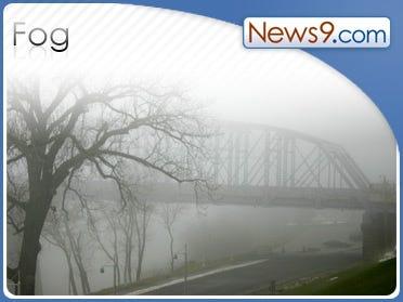 Washington Freezing Fog Downs Trees/Airport Delays