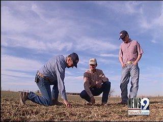 Farmers Anxious for Rainfall as Fields Wilt