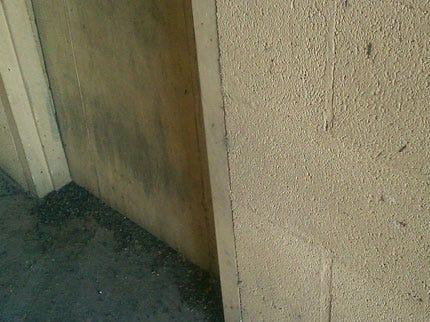 Alva Goes Batty Over Parking Garage Demolition