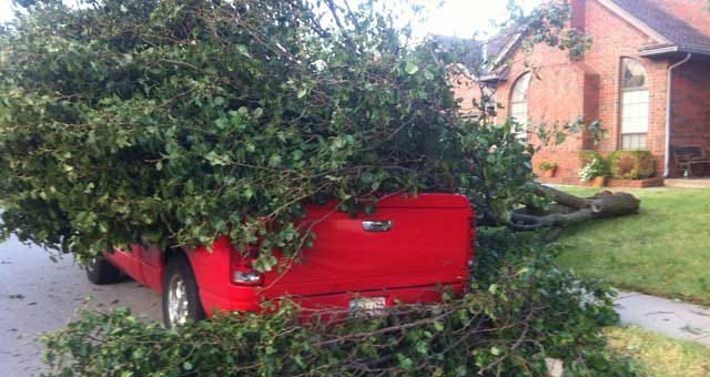 Crews Start Debris Collection In Metro Areas Affected By Storm