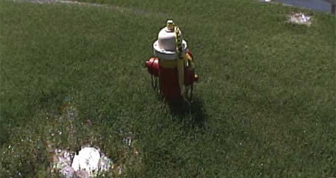 Moore Resident Upset About Overflowing Water Hydrant