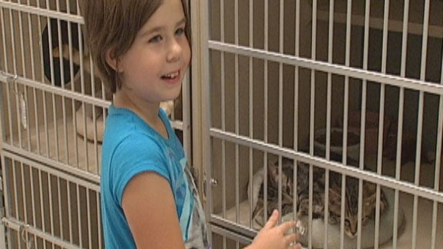 Edmond Animal Shelter Overflowing