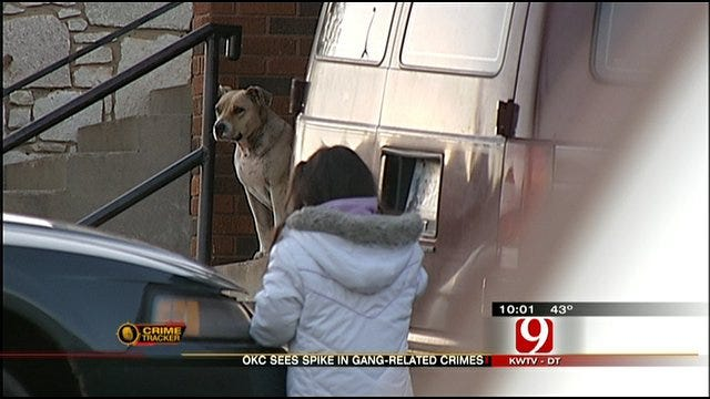Gang Crimes Spike In Oklahoma City